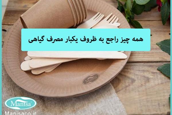 ظروف گیاهی یکبار مصرف